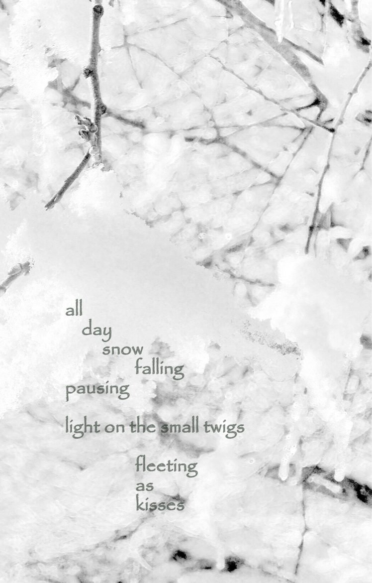 illustrated haiku 2 snow on twigs
